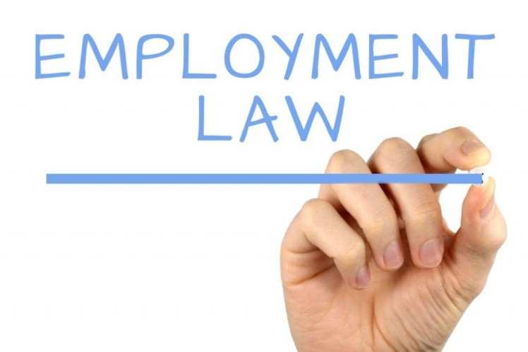 employment-law-1024x683